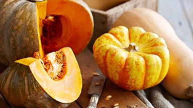 How to prep, cook and store pumpkins when they're in season
