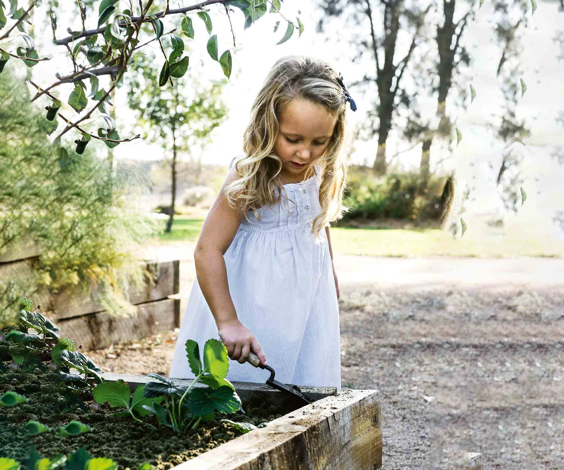 Starting a vegetable garden for kids with 4 easy-to-grow vegies