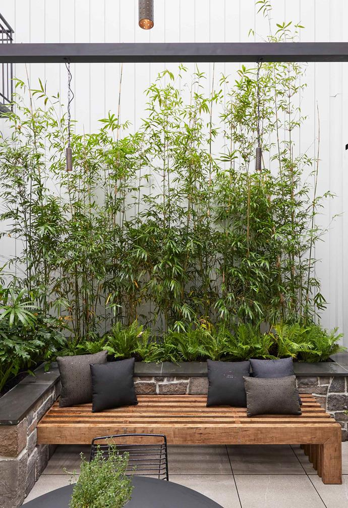 """**Week 9, Courtyard** El'ise and Matt enlisted the services of Block veteran landscaper Dave Franklin early on in the season, imbuing them with confidence as they approached [courtyard week](https://www.homestolove.com.au/the-block-2019-courtyard-room-reveals-20721