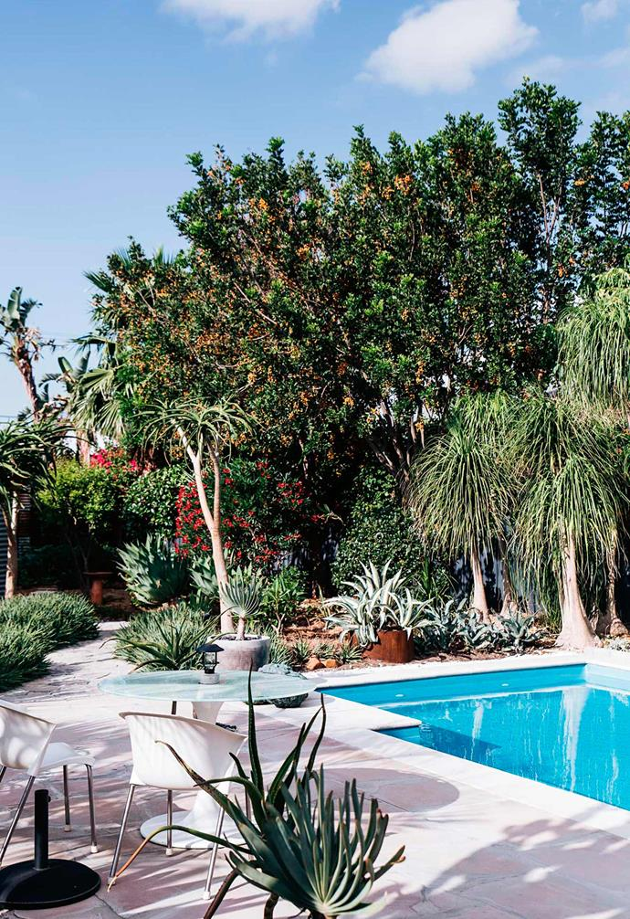 """Artist Philip Drummond's home features a [low-maintenance garden](https://www.homestolove.com.au/outdoor-succulent-garden-13998