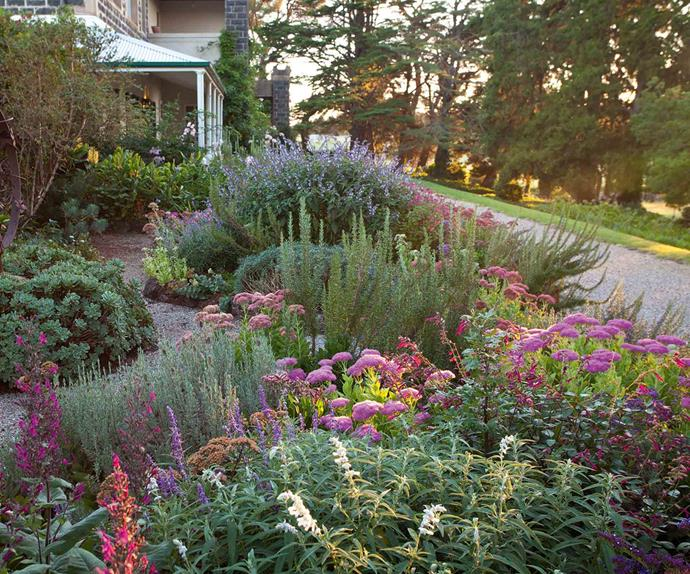 Flower garden with house exterior in the background
