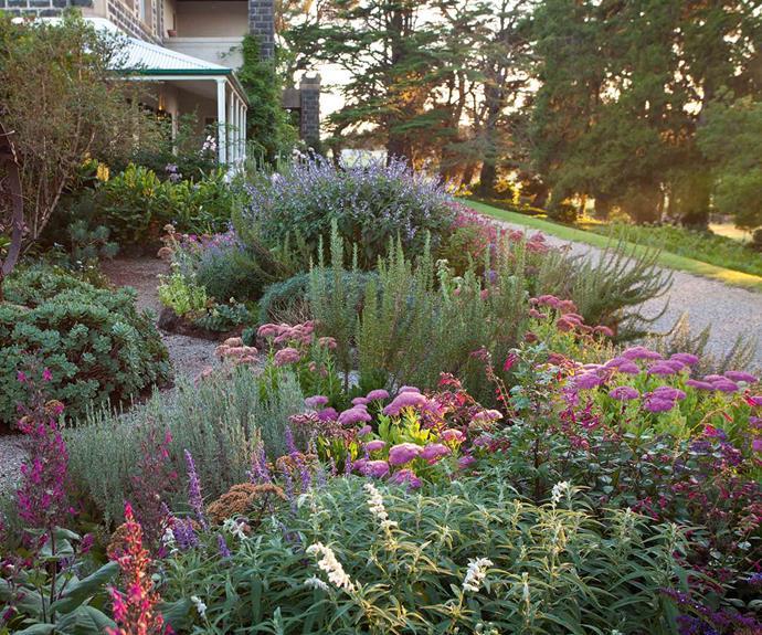 A garden path leads past a sculpture and through salvia, lavender, succulents and sedums.