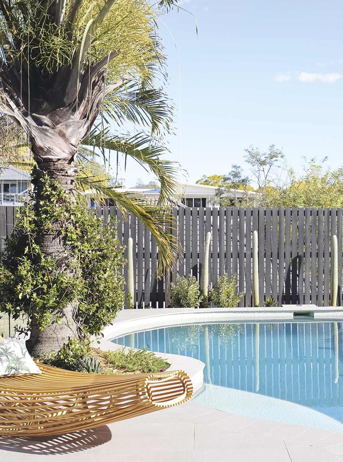 "Palm Springs-inspired plantings around the swimming pool in this [contemporary family home in Coorparoo](https://www.homestolove.com.au/palm-springs-house-coorparoo-19769|target=""_blank"") add a relaxed resort-style look."