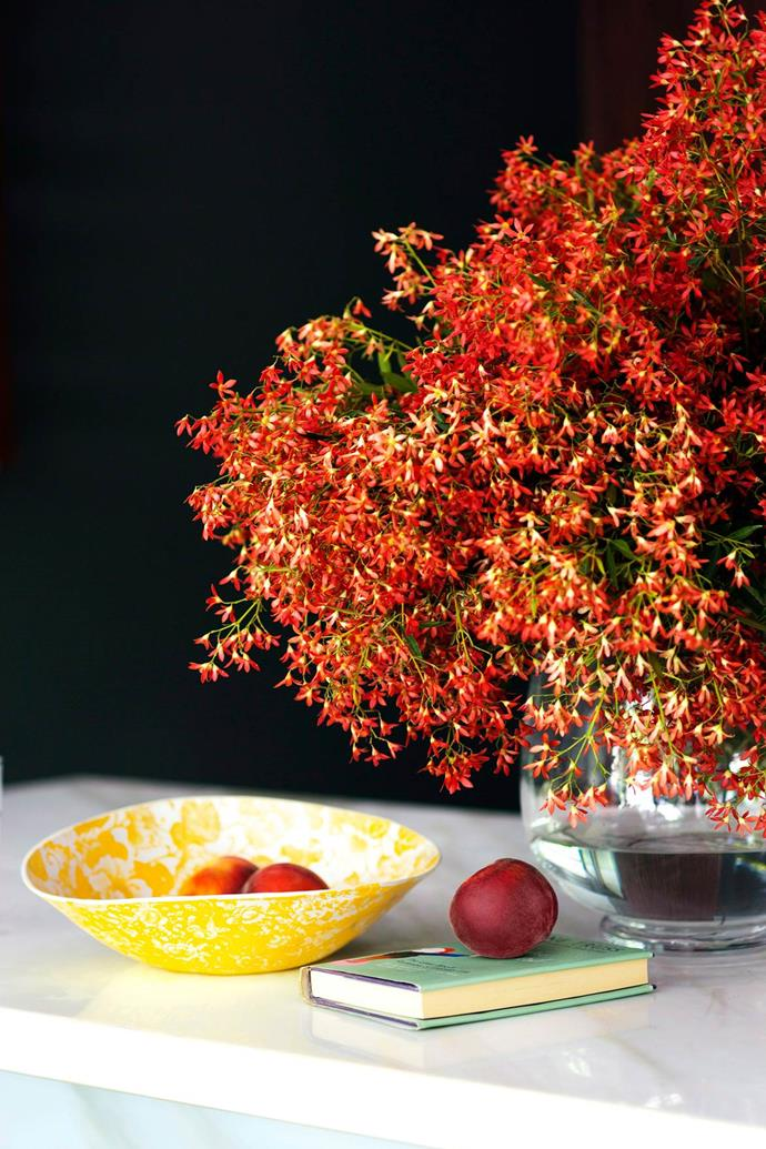 This native plant will instantly create an Aussie Christmas feel into your home.