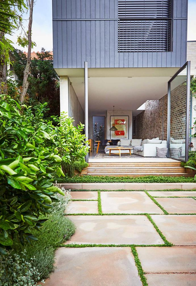 **Entertainment area** Large-format sandstone pavers are linked to the home by a sandstone step. Dichondra is planted between to soften the transition from the interior to verdant exterior.