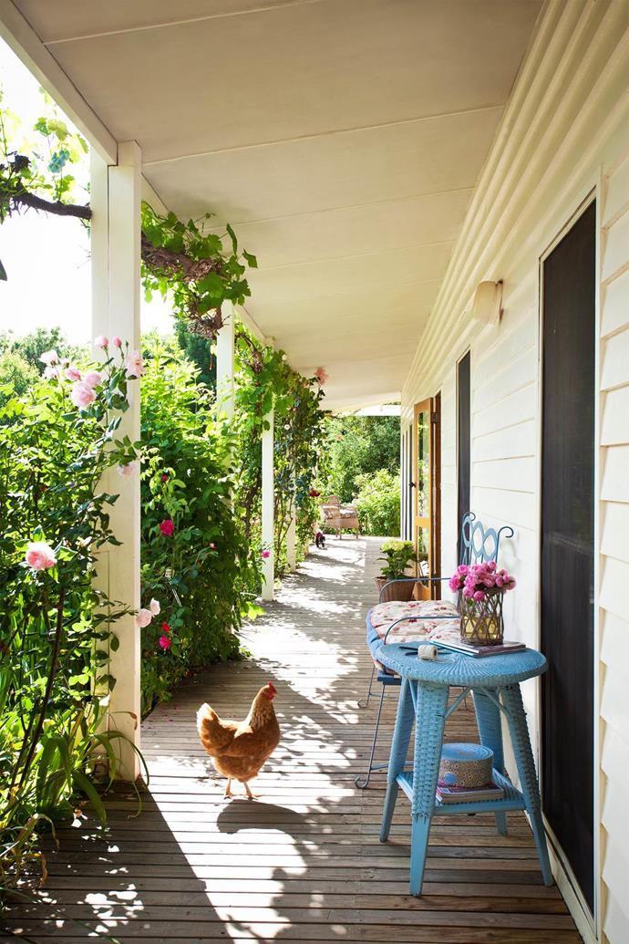 "In central Victoria, near the township of Alexandra, lies Heatherly, a [picturesque property](https://www.homestolove.com.au/rural-garden-in-victoria-is-a-family-affair-4048|target=""_blank"") where past and present. The sun-drenched, north-facing verandah is a perfect place to sit and soak up the sweeping views. Owner Georgie Leckey says the [white timber homestead](https://www.homestolove.com.au/white-timber-homestead-12454