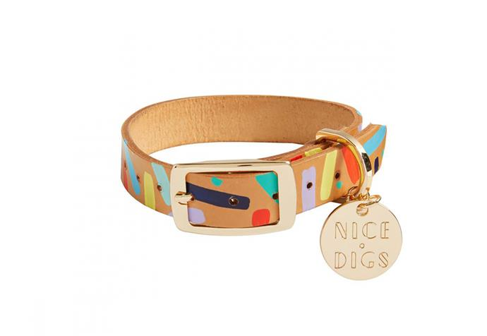"Nice Digs [Confetti Leather Dog Collar](https://www.thefinderskeepersmarketplace.com/shop-directory/nice-digs/products/confetti-leather-dog-collar|target=""_blank""