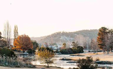 Where to shop, eat and stay in Stanthorpe, QLD