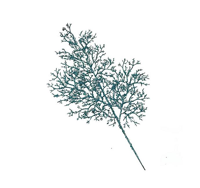 "Christmas Shop glitter twig Christmas tree pick, $7.95, from [David Jones](https://www.davidjones.com/home-and-food/christmas/christmas-themes/coastal-christmas/20120069/Glitter-Twig-Christmas-Tree-Pick.html|target=""_blank""