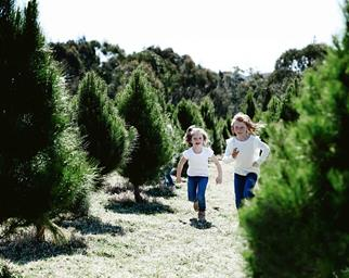 Girls running through a Christmas tree farm