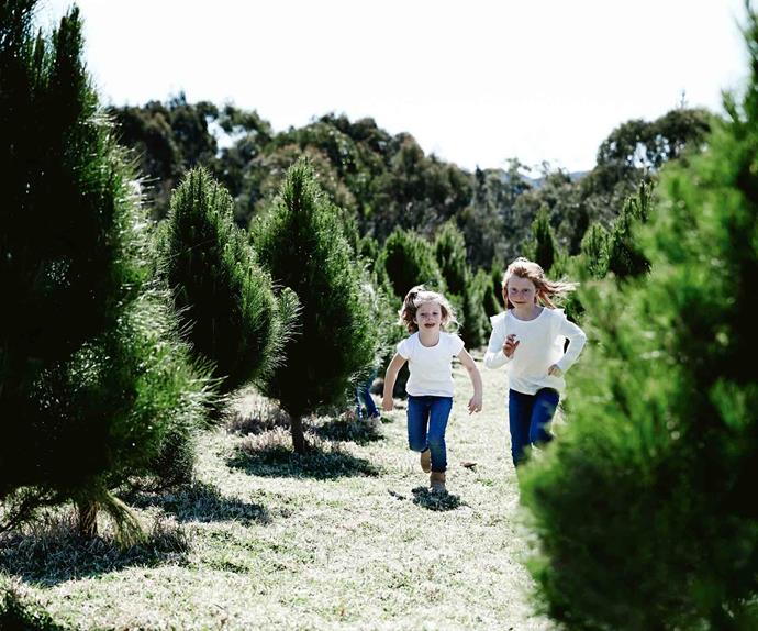 Girls running through a Christmas tree farm