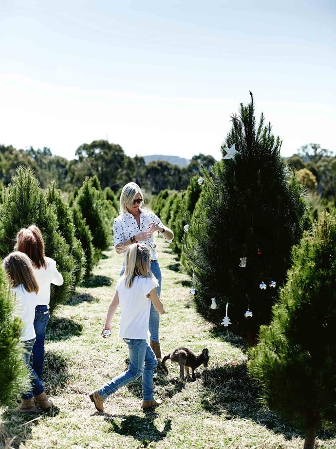 "Louisa Boag and three of her daughters apply a decorative touch to one of the 30,000-plus Christmas trees on their farm in the NSW Southern Highlands. Jo-Jo the joey keeps them company. ""We knew Wingello would be our long-term future,"" Louisa explains. ""We bought a house in Goulburn and renovated that while we lived in it. We did that for three houses, using them as stepping stones for the house we're building on the farm."""