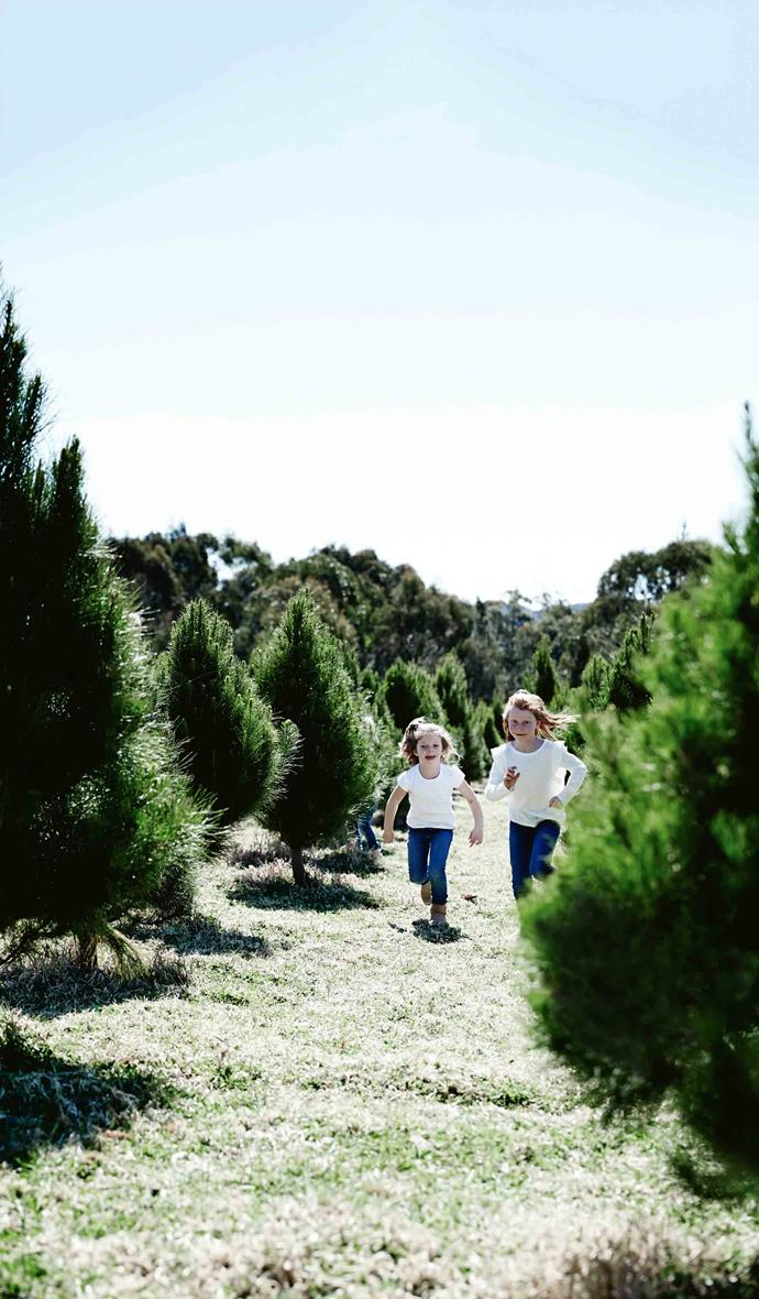 "Georgie and Anna play among the pines. During that time, the couple welcomed daughters Millie, eight, Anna, seven, and Georgie, five. When baby number four, Lydia, now three, was on the way, John and Louisa sold their Goulburn home and rented a 1[9th-century farmhouse](https://www.homestolove.com.au/farmhouse-restoration-20815|target=""_blank"") a short drive away. Work on their new home, which sits within 40 hectares on the farm, is due to finish next winter."