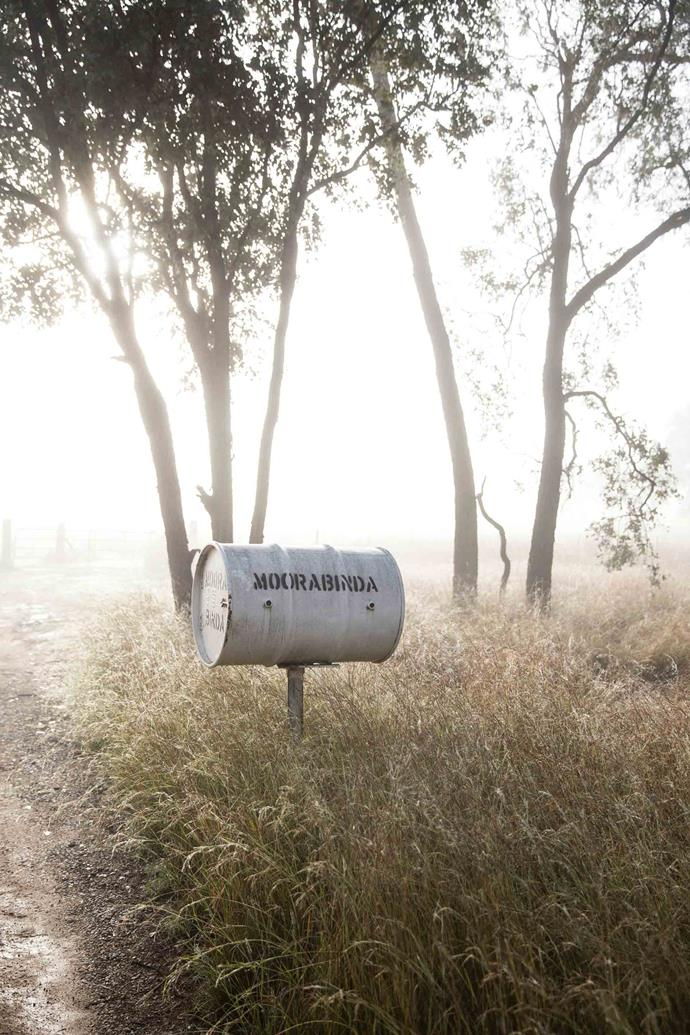 The property's mail box. Julia has always loved Moorabinda, a 4008-hectare former sheep — now cattle — station nestled in the spectacular, almost untouched Dumaresq Valley west of Tenterfield on the NSW–Queensland border.