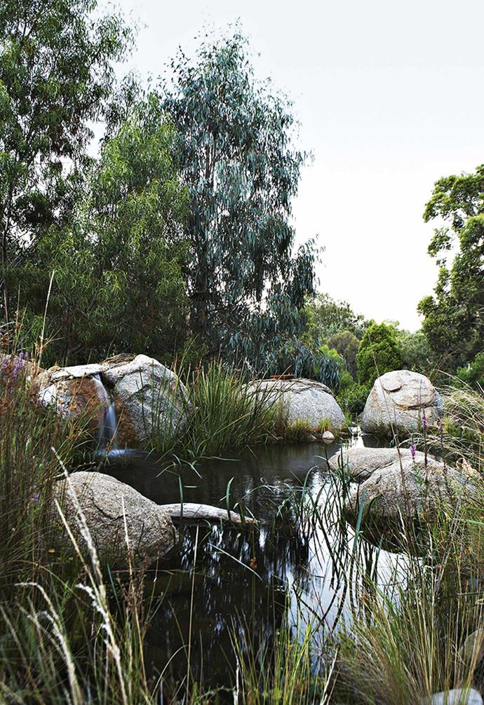 """The garden area, roughly 14 metres across at its widest point and 25 metres deep, is split into two terraces. Linking them is a [water feature](https://www.homestolove.com.au/take-a-splash-7-ways-water-features-can-bring-your-garden-to-life-2899