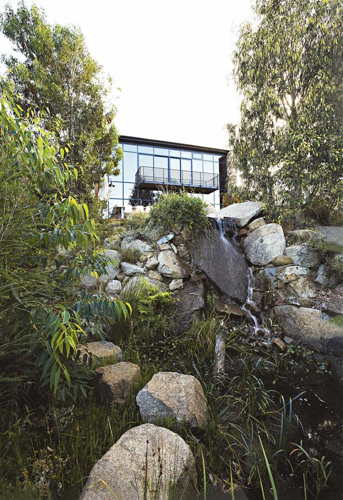 Huge granite rocks that would otherwise have been crushed for use as roadbase feature throughout the garden: bordering the pools, scattered across the water and used as hewn steps beside the waterfall to link the terraces.