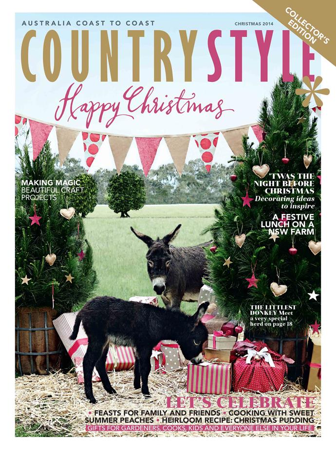 """**2014**<p> <P> Mother and daughter donkey duo Ma Bell and Ador A Bell (who was just one week old at the time!) graced our Christmas cover in 2014. The pair are among more than 20 donkeys who live at [Poplargrove Stud](https://www.homestolove.com.au/celebrating-christmas-on-a-miniature-donkey-farm-12168