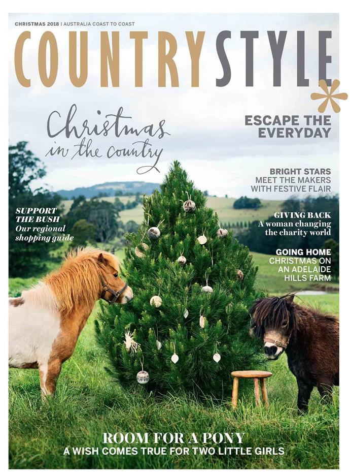 """**2018**<p> <p>Ponies Blondie and Midget took centre stage in 2018. For years, Colin Munro's daughters had asked for a ponies of their own. One day a neighbour, who was moving to Sydney asked him, """"Do you want some ponies?"""" Of course he said yes and on Christmas Eve, Colin and his wife Brooke spent hours tying pink ribbons to trees at [their property in the NSW Southern Highlands](https://www.homestolove.com.au/contemporary-shaker-style-house-20212