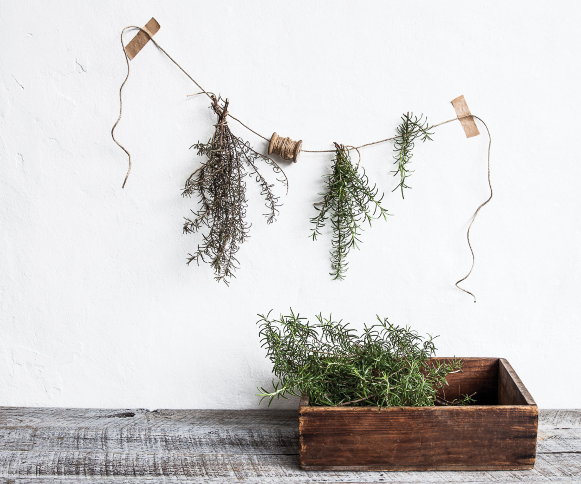 How to dry rosemary naturally and in the oven