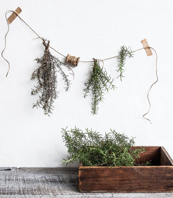 Fresh or dried, a bunch of rosemary is an easy and affordable way to freshen up the kitchen or a dining setting.