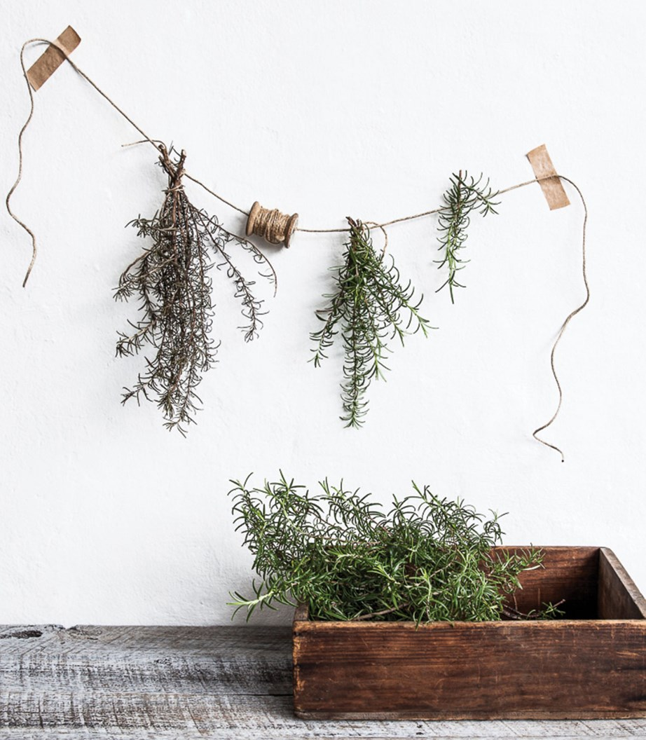 To dry naturally, simply tie bunches of fresh rosemary with string and hang upside down in a sunny position for 2-3 weeks.