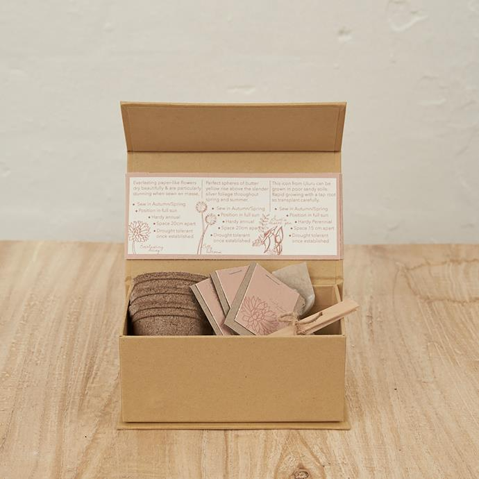 "Grow your own seed kit, $29, from [Inartisan](https://www.inartisan.com/grow-your-own-seed-kit|target=""_blank""