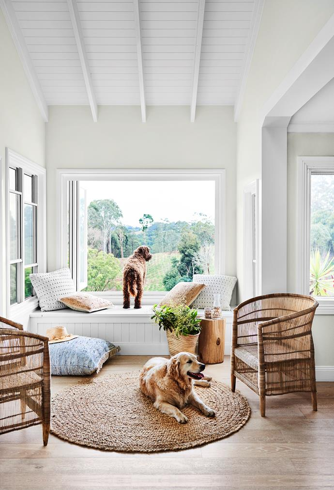Rocky, a tamaruke, and golden retriever Mango Rose enjoy the day bed nook. The cushions are from Pampa in Byron Bay and Globe West. Chairs from Malawi Cane.