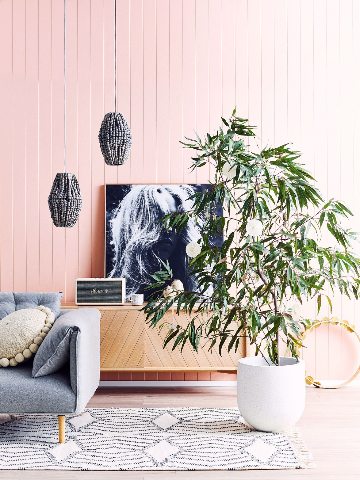 Here, a long-leaf fig feels festive while blending in with the existing decor.