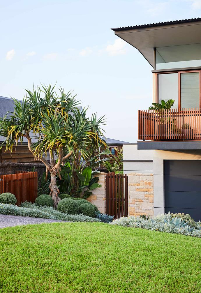 "Maximum exposure to the elements requires all the plants on this property to be hardy. ""The front garden's pandanus tree was pre-existing, which is rare in Sydney,"" says the project's landscape architect, Trystan Graham. The grass is buffalo."