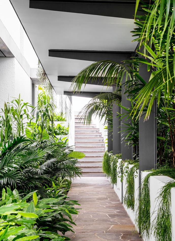 """The journey to the house under the covered walkway up from the garage and """"through the lush garden dappled with shadows is something we were keen for the clients to experience"""", says Nick."""
