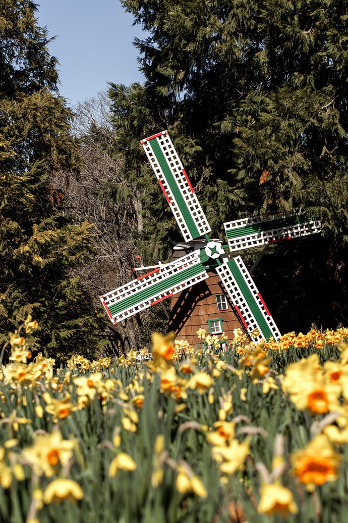This charming miniature windmill is one of three on the property.