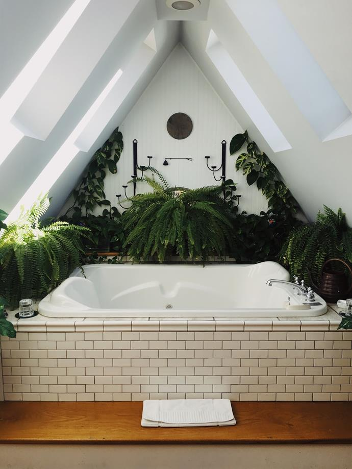 Indoor plants are an easy and inexpensive way to turn your bathroom into a sanctuary.