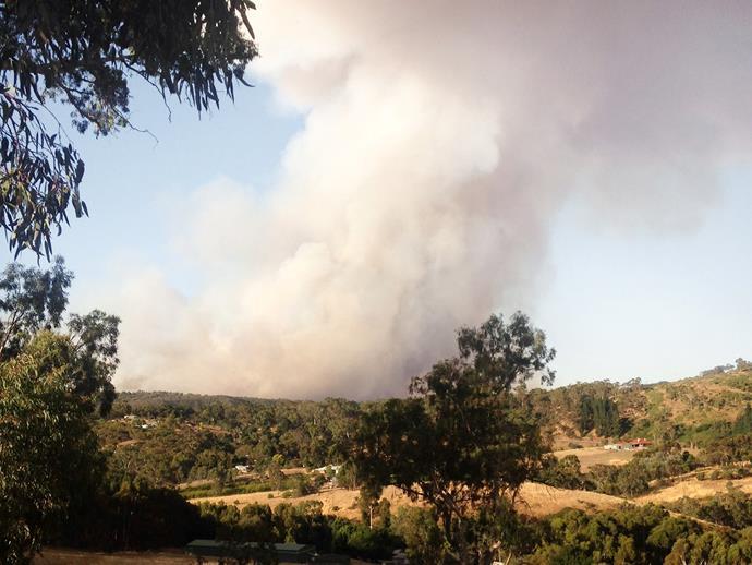Sampson Flat bushfire in 2015.