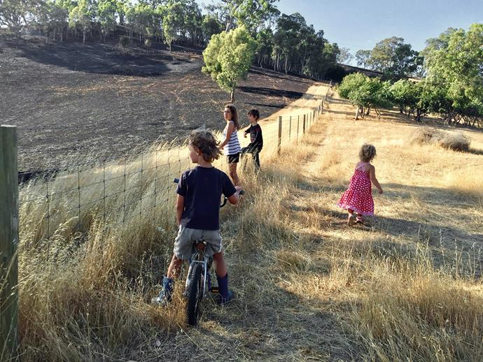 The children survey the burnt-out paddock.
