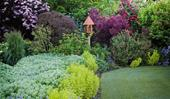 8 ideas for garden borders