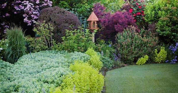 8 ideas for garden borders