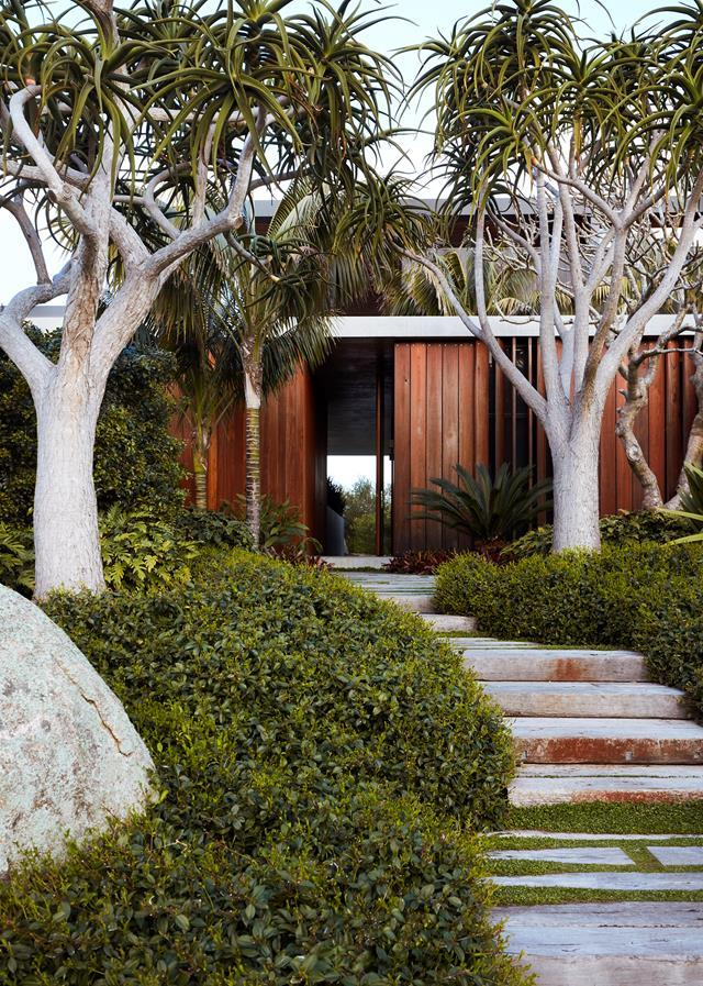 "An exquisite variety of robust, rugged plantings come together in this [Mollymook garden](https://www.homestolove.com.au/robust-coastal-garden-by-william-dangar-20564/|target=""_blank""