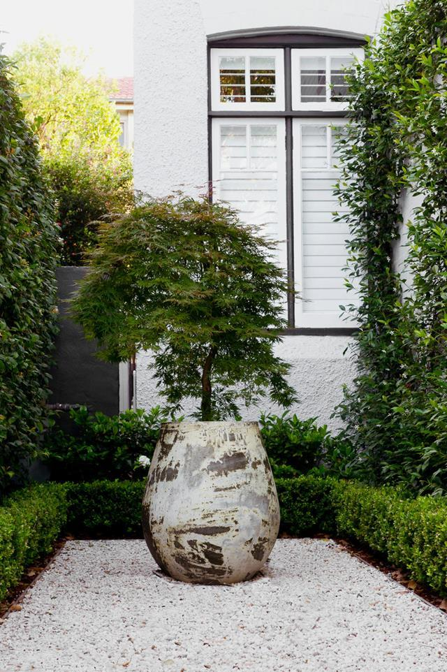 "This functional and serene [semi-formal garden](https://www.homestolove.com.au/functional-and-serene-semi-formal-garden-20478|target=""_blank"") features a potted Japanese maple is centred in white gravel at the home's front entrance."