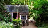 How to get your garden shed in order