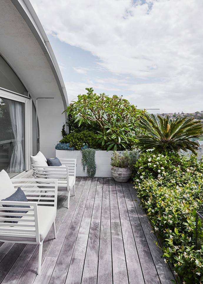 Gloster 'Vista' armchairs from Cosh Living enjoy sweeping views over Bondi Beach.