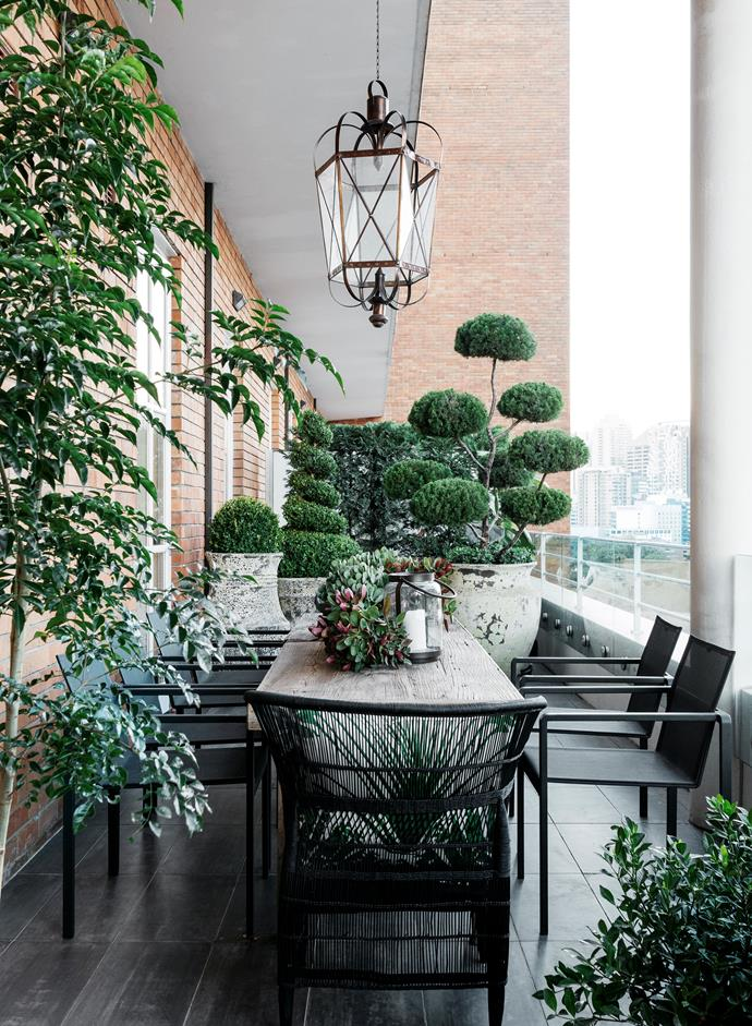 Belle style director-at-large Steve Cordony imbued his former apartment in Sydney's Surry Hills with a mood of relaxed elegance. An abundance of greenery and a chic dining setting on the generously size terrace makes it an inviting space for entertaining family and friends.