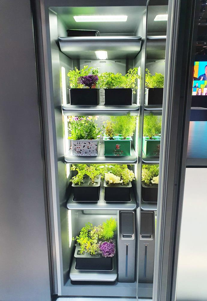 Samsung's Garden Centre fridge is able to be added to an existing kitchen, whereas LG's (which featured a very similar look to this) needs to be added to a new or renovated kitchen. Both are still conceptual at this stage.