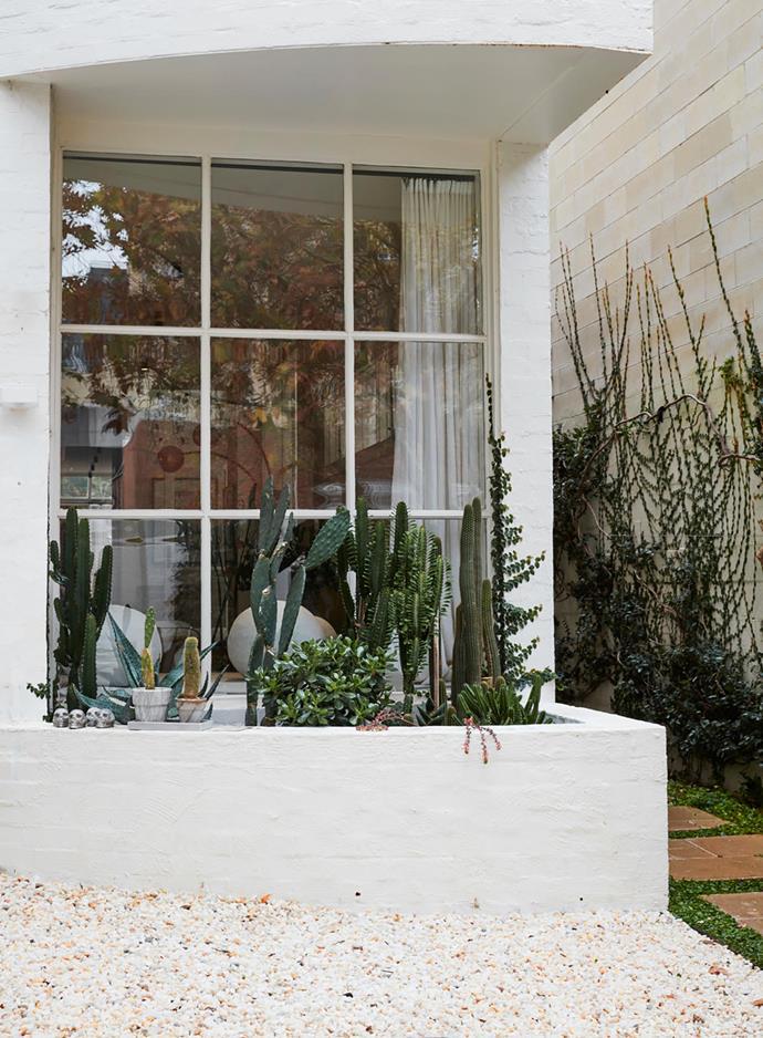 Outside a window, the home's fresh white facade extends into a planter box for a cactus garden.