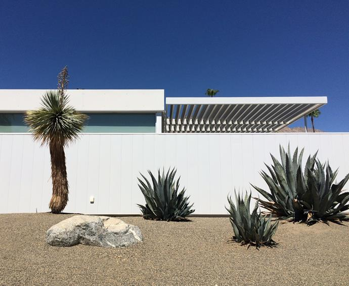 Palm Springs is the epicentre of modern desert-inspired design. Discover the region's mid-century architectural past on a tour with Palm Springs Mod Squad.