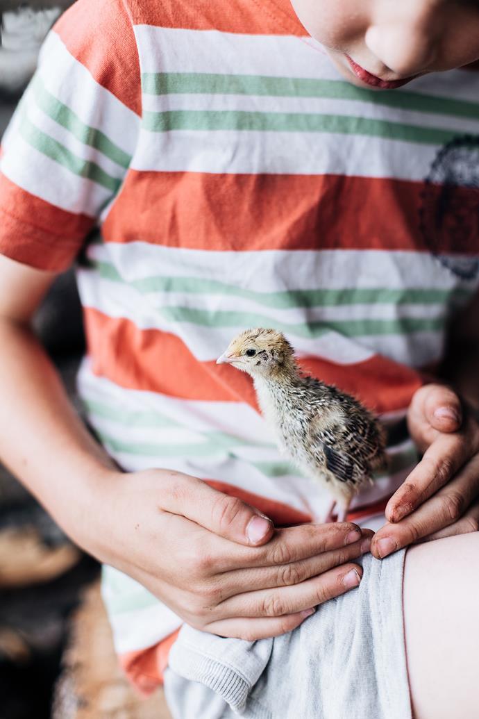 Lukas cradling a prized quail.