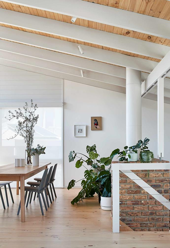 **Dining** Statement dining chairs are paired with a timber dining table.