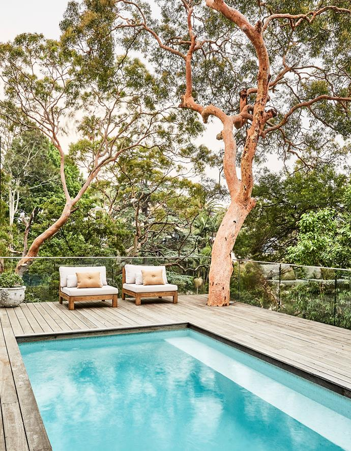 Designed by Formed Gardens, the pool area includes both a built-in sofa and movable seating in the form of outdoor chairs from Freedom. A glass pool fence keeps the kids safe without spoiling the view.