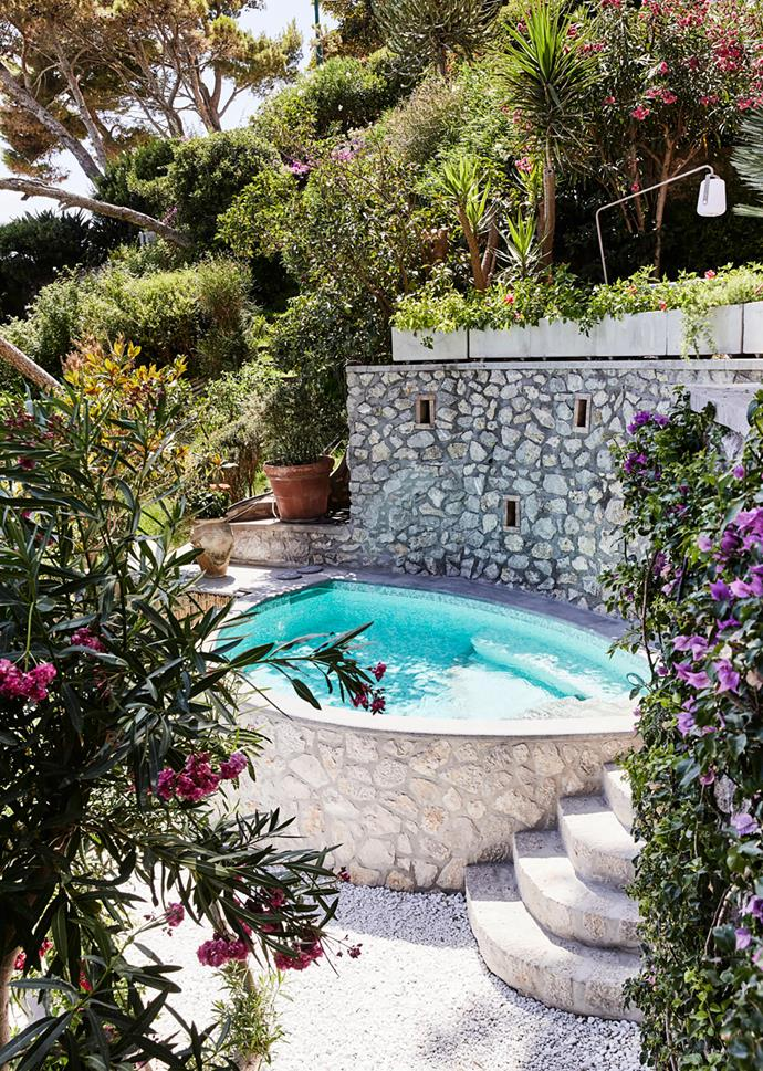 The owners had the saltwater pool put in one year ago. Surrounded by flourishing native flora and facing the open sea, it's a luxurious spot to cool off. However, having an in-ground pool was not permitted on the property, so they had to build the concrete and stone structure into a terrace wall.