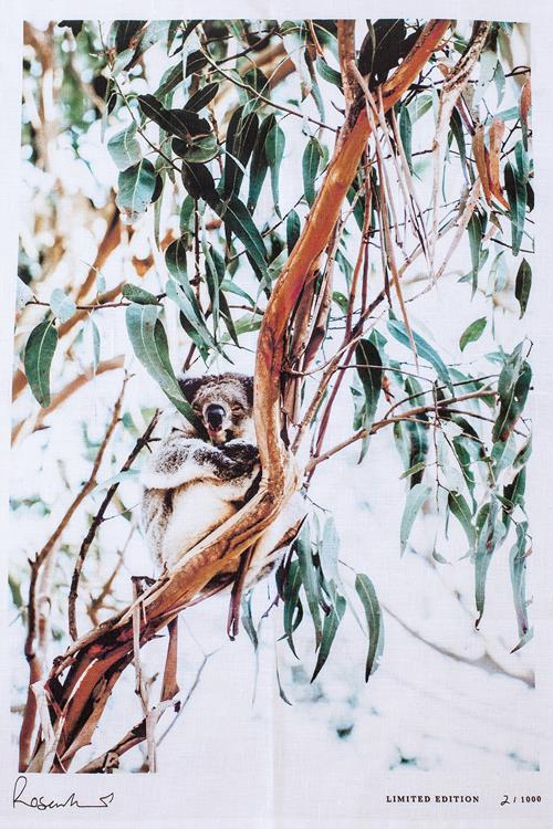 "Photographer Kara Roselund, who's work centres around Australia's natural landscape, fauna and flora, raised a whopping $200,000 for Wires, through her 'Koala Crisis, Bushfire Recovery' GoFundMe fundraiser.  <br><br> Koala Souvenir Tea Towel, $68, [Kara Rosenlund](https://shop.kararosenlund.com/koala-souvenir-tea-towel/|target=""_blank"")"