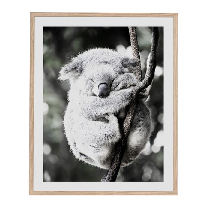 "Middle Of Nowhere will donate $50 to WIRES for every Koala Friend: Bushfire Appeal Edition print sold. How could you resist? <br><br> Koala Friend Bushfire Appeal Edition, from $265, [Life Interiors](https://www.lifeinteriors.com.au/middle-of-nowhere-koala-friend-bushfire-appeal-edition|target=""_blank""